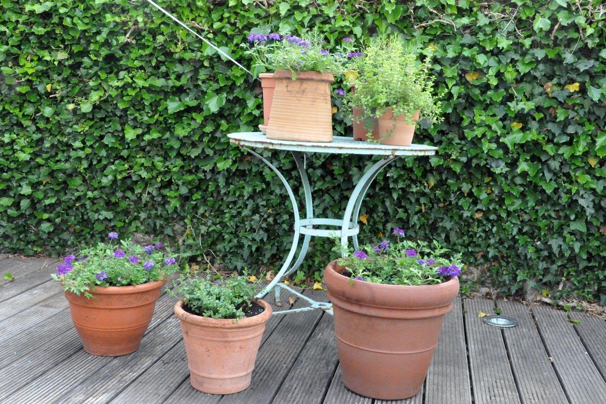 Maison Christol - bloemen en plantjes